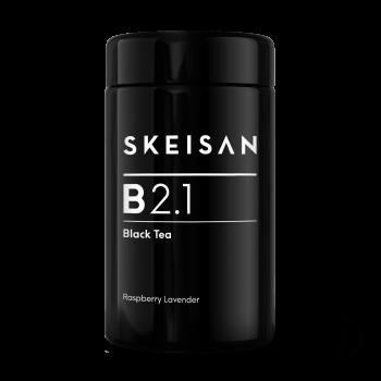 B 2.1